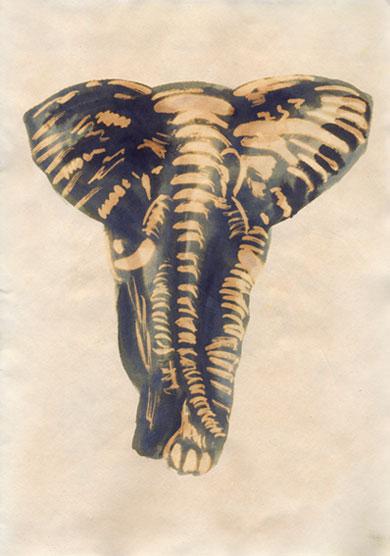 Elephantrw